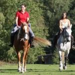 Randonnee-equestre