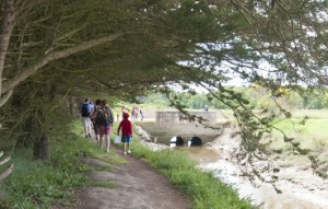Randonnée à pied sur les chemins de Mesquer-Quimiac @ Place de Kercabellec | Mesquer | Pays de la Loire | France