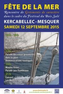 Fête de la mer - Festival du bois salé @ Place de Kercabellec. | Mesquer | Pays de la Loire | France