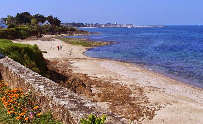 Plage de Port Loup Piriac-sur-Mer Photo No0