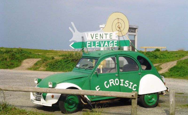 Espace escargot Le Croisic Photo No1